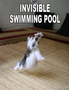 invisible_swimming_pool-7054